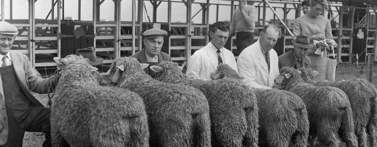 Leicester Longwool Sheep Breeders Association History